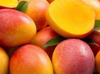 El mango es: