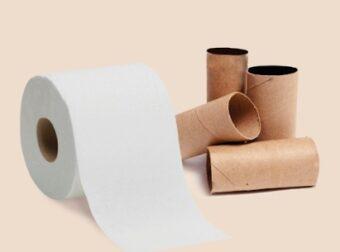 Pasos de cómo reciclar cartón de papel higiénico