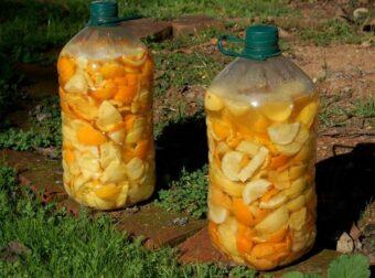 Detergente ecológico con cáscaras de naranja y cítricos