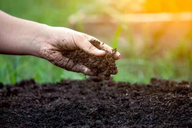 ¿Ahorramos dinero siendo ecológicos?